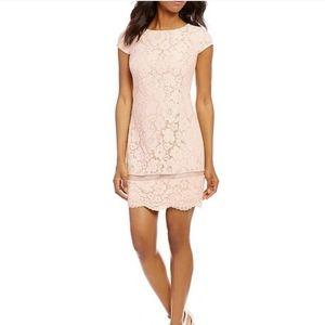 NWT Vince Camuto blush scalloped lace dress sz 12